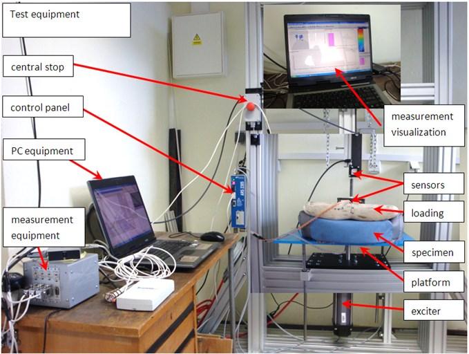 Vibratory monitoring and diagnostics techniques