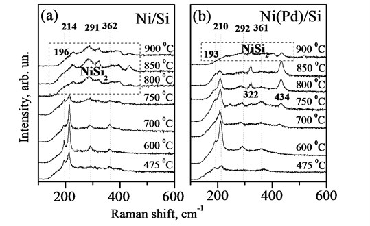 Room-temperature micro-Raman spectra for Ni (a) and Ni(Pd) (b) films on Si, annealed at various temperatures