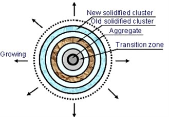 The schematic representation of hydration solidification