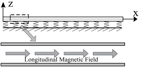 Schematic of single-walled carbon nanotube under the longitudinal magnetic field