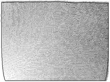 Vector diagram for 90 days  of gap liquid flow field