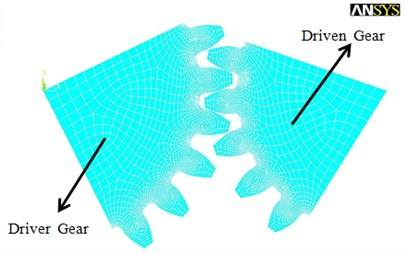 Finite element meshing model of one pair of the meshing planet gears p and d