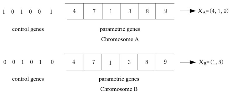 Chromosome