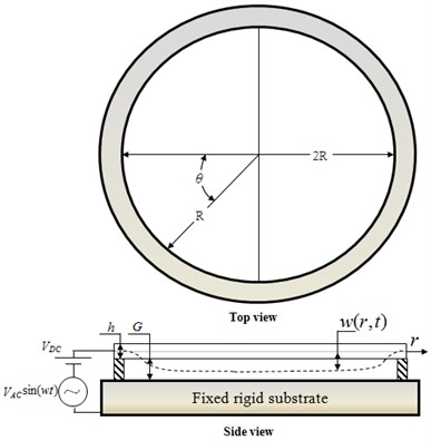 Schematic illustration showing electrostatic actuation of micro circular plate