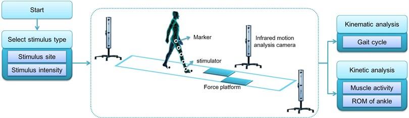 Experiment environment for gait analysis by applying somatosensory stimulus