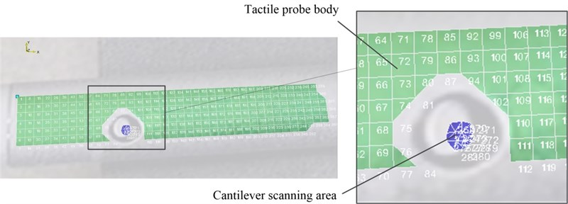 Tactile probe body and cantilever scanning area
