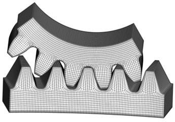 Finite element model of five pairs of teeth
