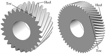 Models of involute beveloid gears