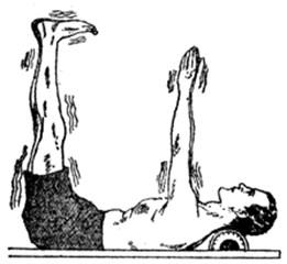The capillarity exercise
