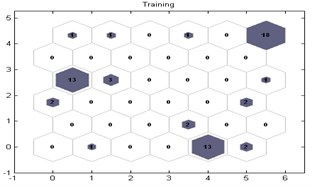 SOM topology of model training process