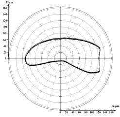 Rotor's orbit diagram near the highest speed