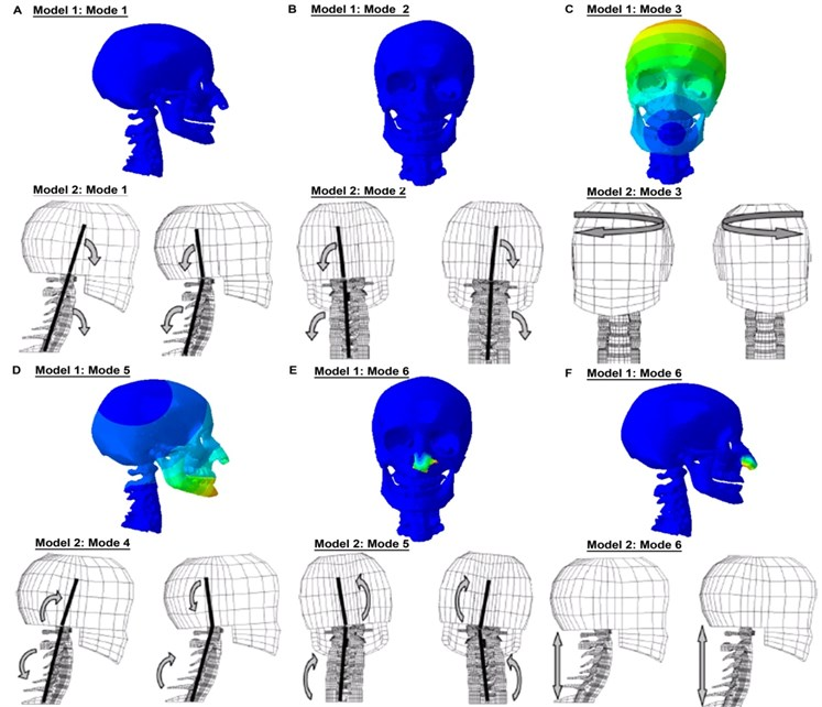 Comparison of the mode shapes with Meyer et al. [22]'s FE head-neck model