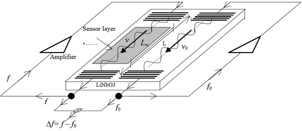 The system of a sensor with an acoustic surface wave [10]