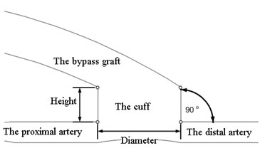The model of a bypass graft with a cylindrical cuff and the artery (a);  the model of a bypass graft with a conical cuff (b)