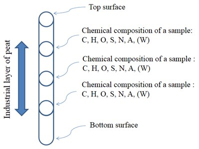 A schematic diagram of a bore and a points of sampling in a peatland