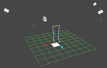virtual space in which measurement of the movements is performed