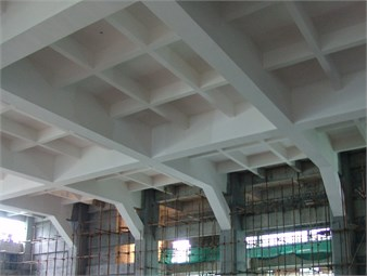 Practical application of a novel RC frame structure with haunch braces  in a sports education building