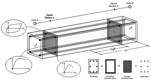 Diseretization of a typical reinforced concrete cross-section
