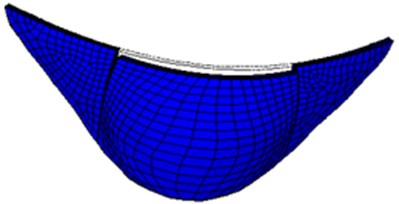 First-order mode shape of small numerical arch dam model