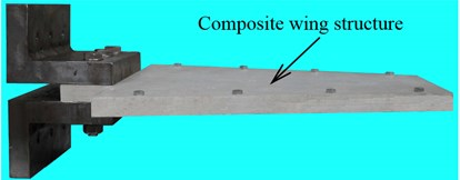 Photograph and schematic diagram of composite wing structure