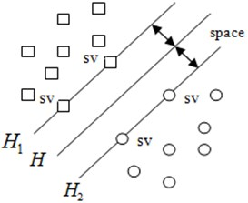 The optimal classification line in a two-dimensional system