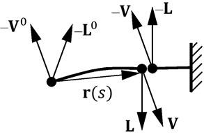 Equilibrium condition in the beam