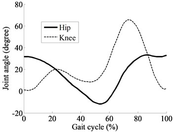 Human's hip and knee joint angles