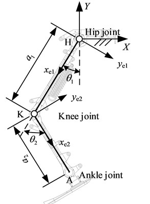 Kinematic model of the exoskeleton with single-axis knee joint