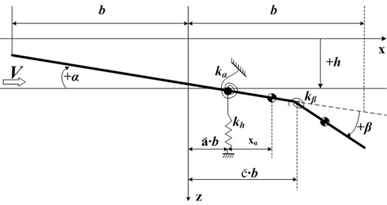 A binary wing model with a control surface