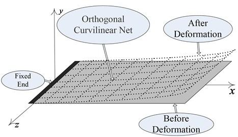 Orthogonal curve net