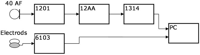 The block diagram of the measuring setup, where: 40 AF – G.R.A.S microphone,  1201 – NORSONIC preamplifire, 12AA – G.R.A.S amplifire, 1314 – M-AUDIO IN/OUT chart, 6103 – KAYELEMETRICS Electroglottograph (EGG), PC – computer with Adobe Audition 3.0 software