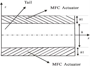 Schematic diagram of the tail with MFC
