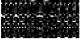 Measurement matrix and data compression