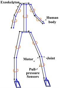 Man-machine coupling schematic diagram of human extremity exoskeleton
