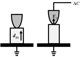 a) AC modulation voltage aligned parallel to the spontaneous polarization leads to a vertical vibration of the piezoelectric sample due to the d33 effect, which applied the out of plane driving  force on the tip in PFM imaging, b) The out of plane harmonic amplitude responses  of the probe under the out of plane driving force via finite element analysis