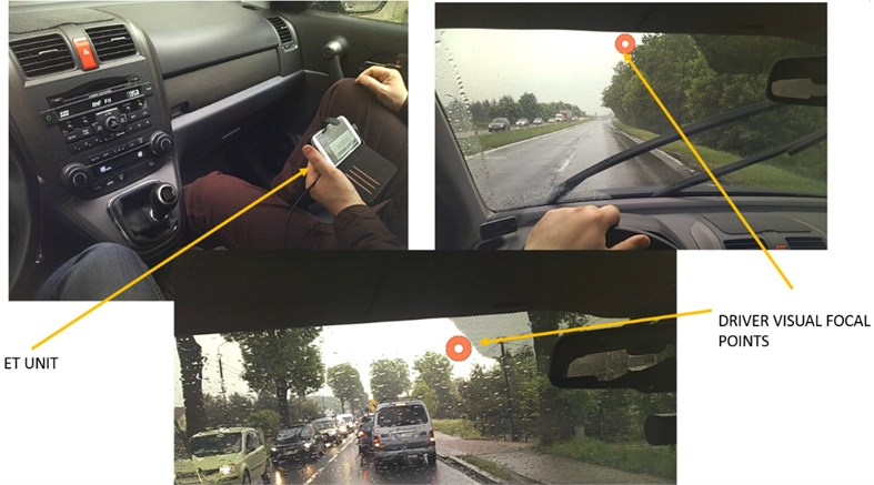 Eye tracking system used in the studies