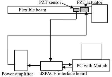A schematic of the experimental setup