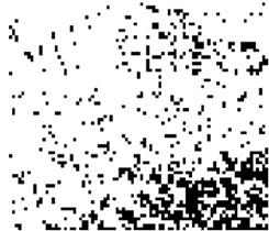 Get particles coordinates