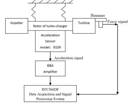 Schematic diagram of test