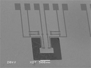 SEM photo of T-shaped piezoresistive microcantilever