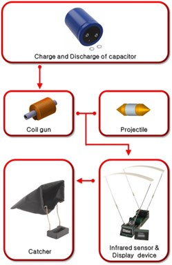 Flow chart of the experiment