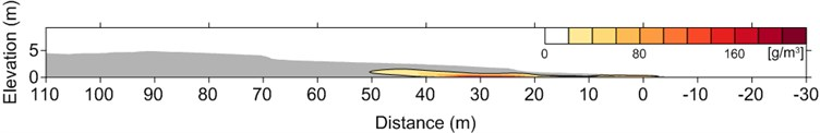 Computed wave-phase-average suspended sediment concentration field after 30 waves