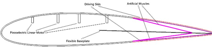 Conceptual design of the adaptive variable camber compliant wing