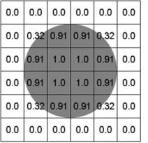 Eulerian volume fraction