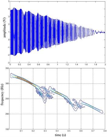 RR speed sine wave and Wigner Ville distribution