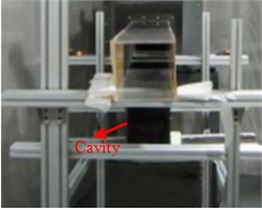 Pressure pulsation test in the square cavity