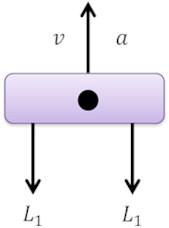 Action forces of vertical vibration