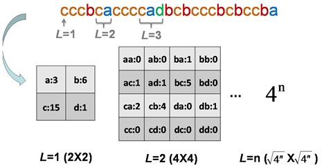 The intelligent icons of the string S= cccbcaccccadbcbcccbcbccba;  the frequencies and the subwords for L= 1, L= 2 and L=n