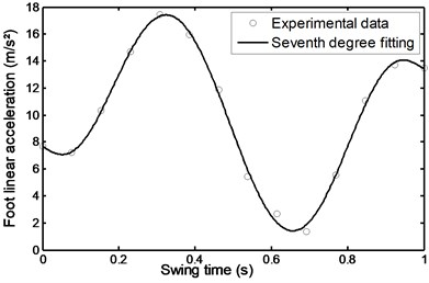 Linear acceleration of the  foot during stairs ascent
