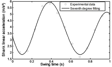 Linear acceleration of the  shank during stairs ascent
